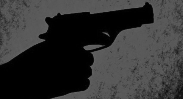 भारतीय गाडीमा आएको समूहले तुलसीपुरमा चलायाे गोली