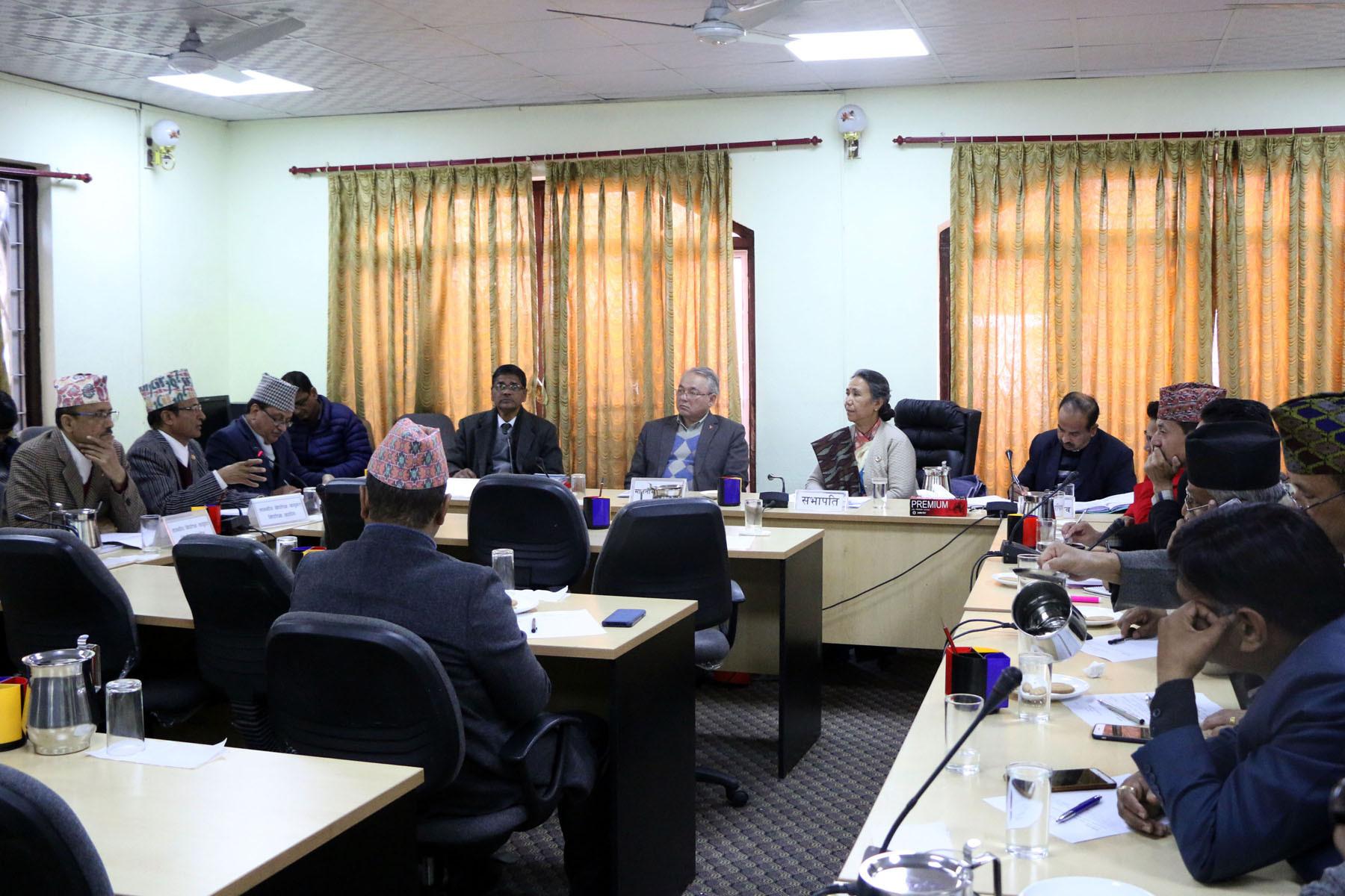 राज्य व्यवस्था समितिको बैठक। फोटो : नवीन पौडेल/रासस