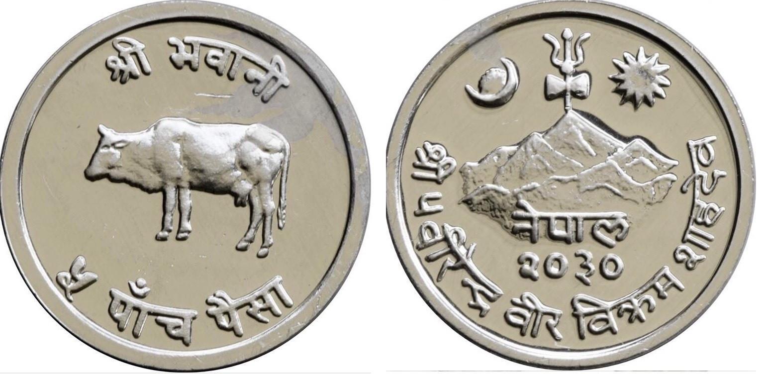 एकापट्टि गाई र अर्कोपट्टि त्रिशुल अंकित पाँच पैसाको सिक्का।