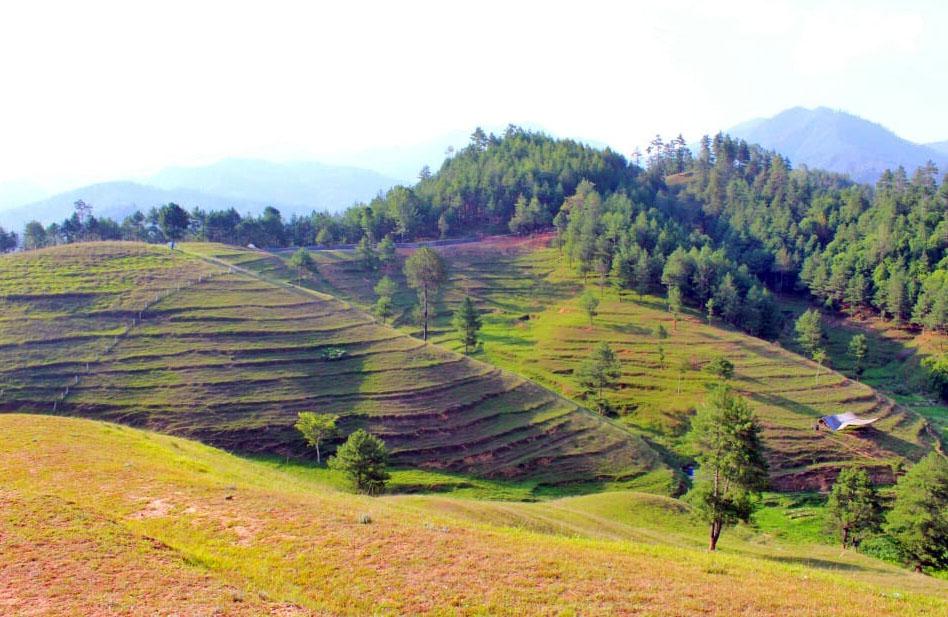 मनोरम चित्लाङ :: Setopati